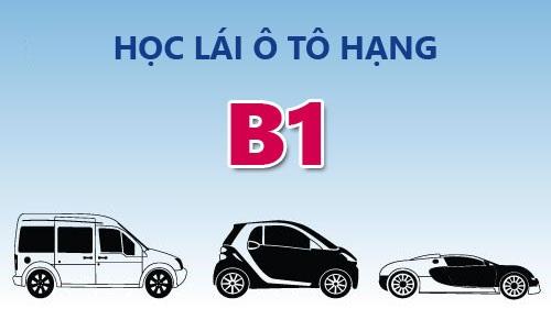 Học lái xe ô tô bằng b1 - Lấy bằng nhanh chóng, học phí cực sốc
